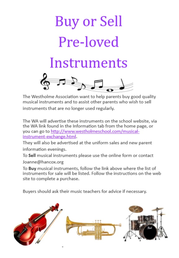 Musical Instrument Flyer